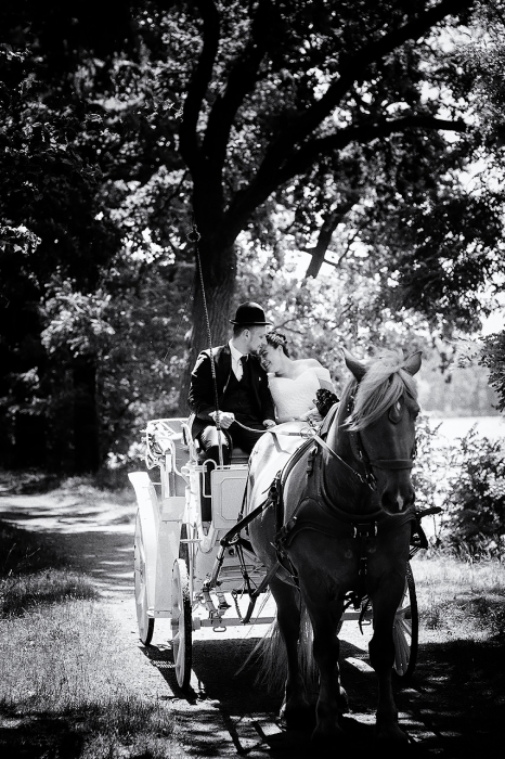 bride-horse-carriage